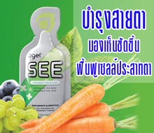 SEE-Link
